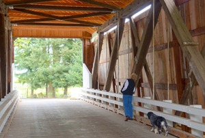 Mo checking out the new roof at Gallon House Bridge near Silverton
