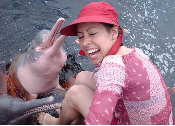 pink_animals_8a