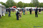 20100513-Bullmastiff-Clubmatch_30908.jpg