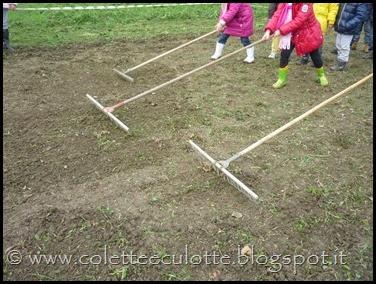I bambini delle classi 1° della Scuola Primaria di Padulle piantano il grano! (26)