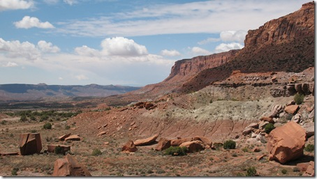 2012-04-15 Petrified Wood, Fry Canyon, UT (73)