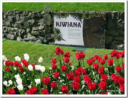 Kiwiana at Wellington Botanical Gardens  as part of the Rugby World Cup.