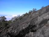 Semeru - the volcanic scree begins (Daniel Quinn, July 2010)