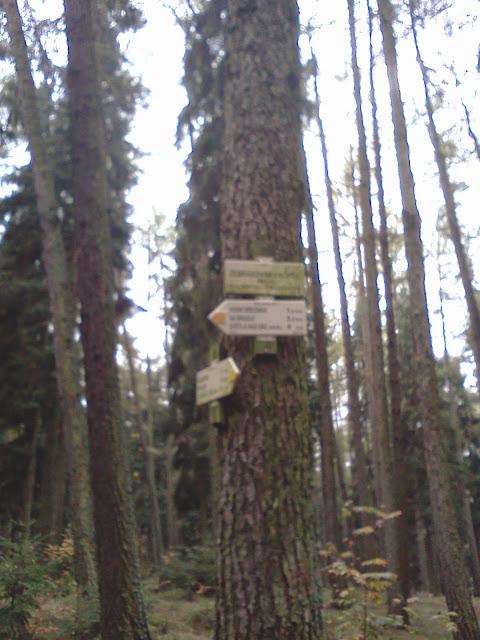Žebrákovský kopec