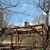 Chata Socjologa - Obozy Budowlane - Budowa Wiaty - maj 2003