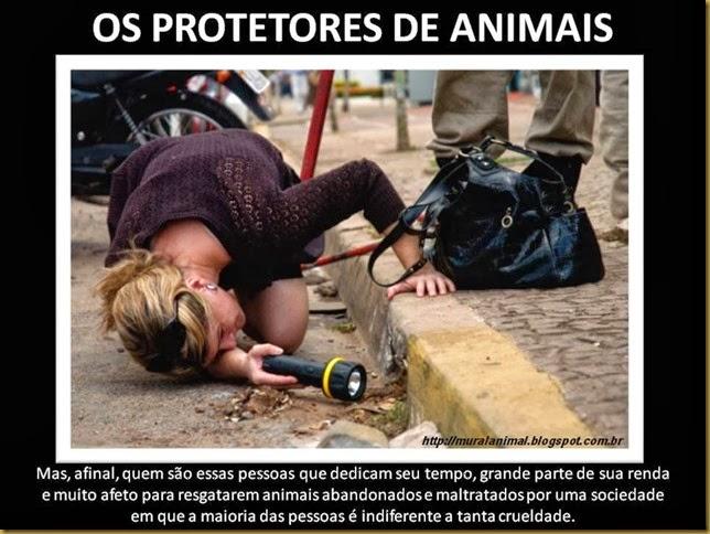 protetor-animais (1)