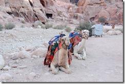 Oporrak 2011 - Jordania ,-  Petra, 21 de Septiembre  496