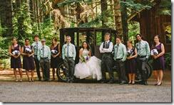 wedding pro 28