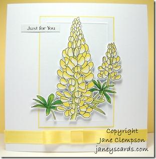 Lupin Card