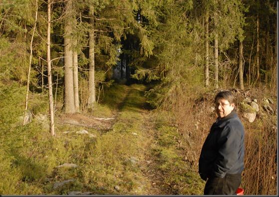 suomalainen syys metsä suppilovahvero 045