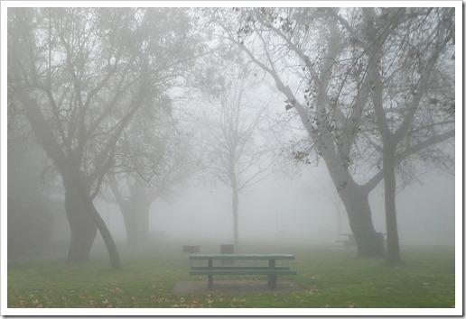 121211_fog_27