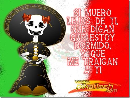 feliz dia de los muertos (13)