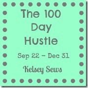 100 Day hustle