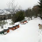 2012-02-04 (3).jpg