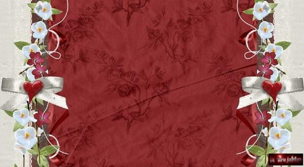 plantillla-red-02
