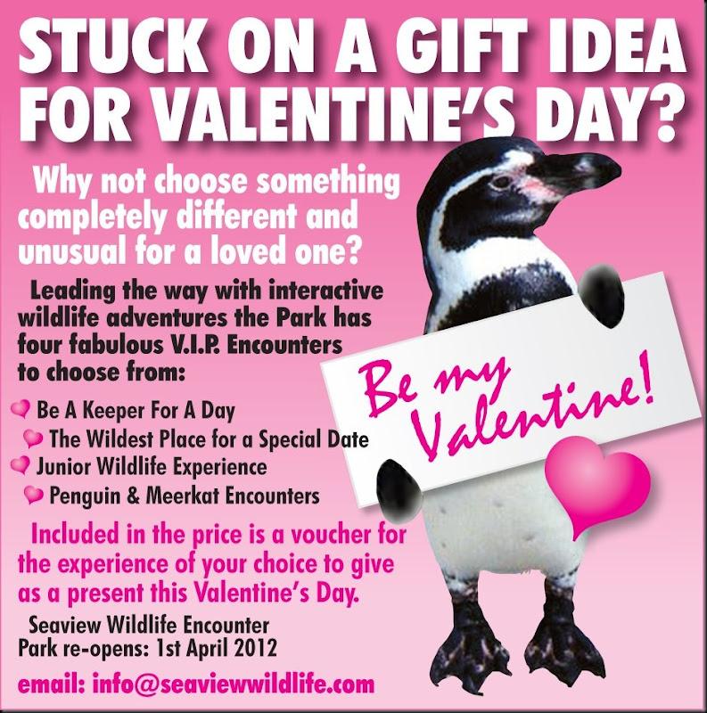 Seaview WLE Valentine ad web