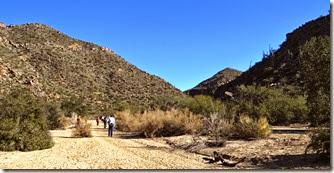 Wild Burro Hike Jan 21 065