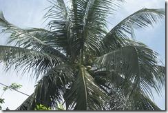 Philippines 149