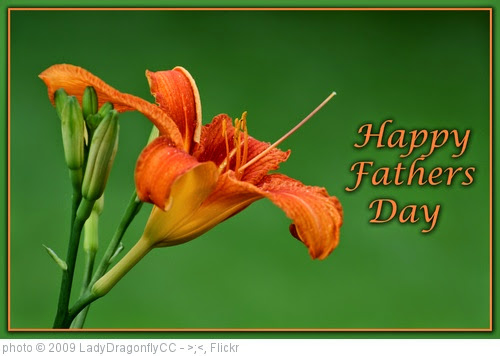 'Fathers Day Lilly' photo (c) 2009, LadyDragonflyCC - >;< - license: https://creativecommons.org/licenses/by/2.0/