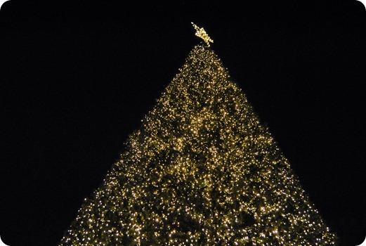 Plano Christmas Tree Lighting 2012 049