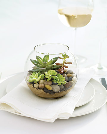 These mini terrariums make chic table decor when grouped en masse -- and they double as favors, too! Just place sand and rocks in the bottom of a fishbowl votive holder.  (marthastewartweddings.com)