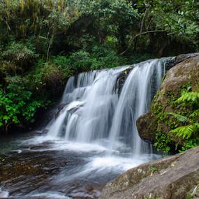 Waterfall at Kodaikannal by Vijay Nagaonkar - Landscapes Waterscapes