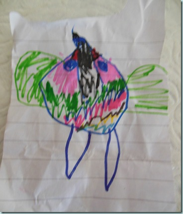 Lilians bird drawing