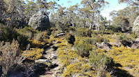 04 Lake Adelaide 2013-01-20.jpg Photo