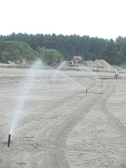 rebuilding cranberry bog putting in main sprinkler line Plympton 7.1.12