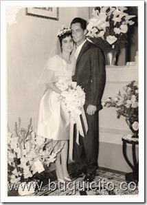 boda ludo y silene