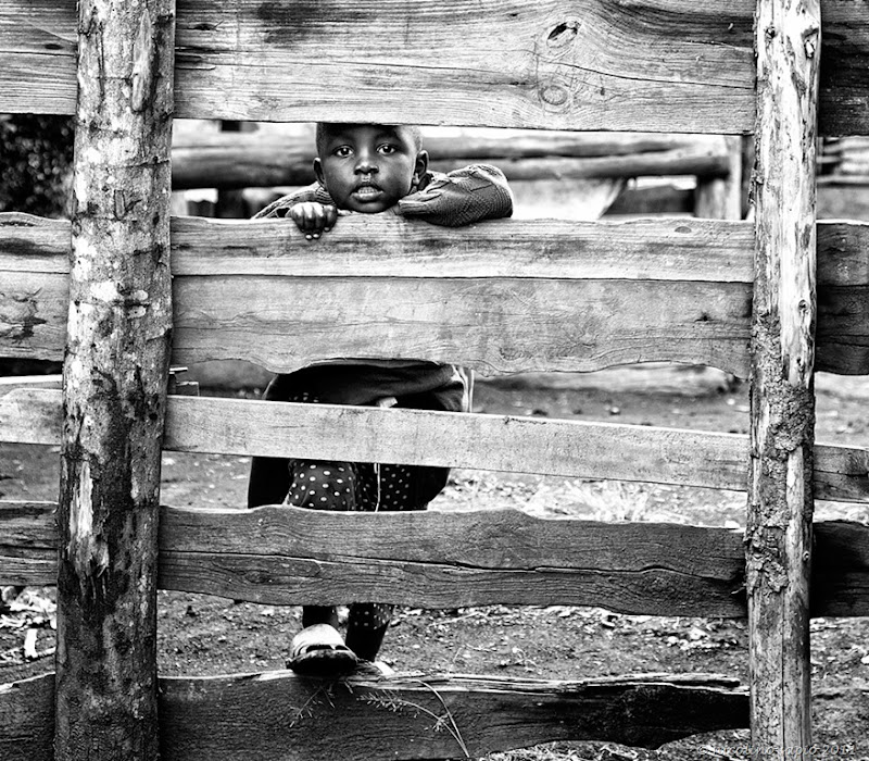 Boy looking through fence IMG_7795 N Sapio