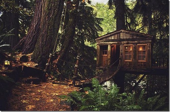 awesome-treehouses-7