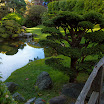Japanese Tea Garden CA