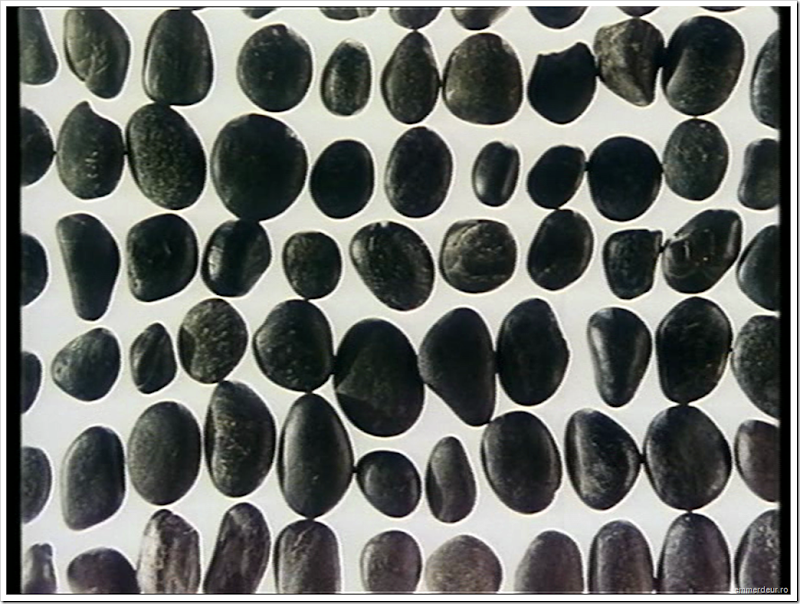 jan svankmajer a game with stones 1965 emmerdeur_102