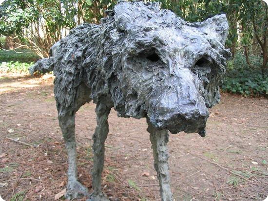 val di sella Sally Matthews cane