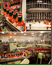 Tabasco-Production-Line-550x (1)