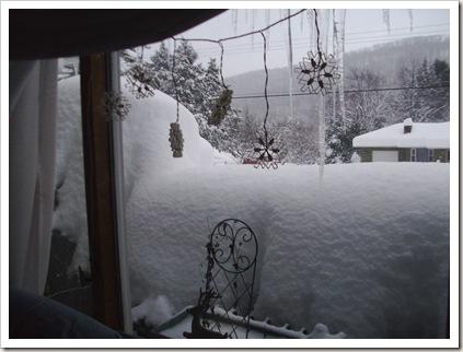 more big snow 2010 010