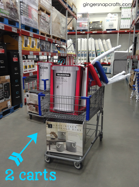 two carts from Sam's Club