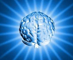 a better brain