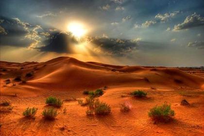 desert543awe