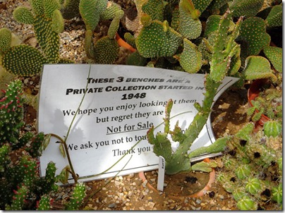 Cacti14-blog