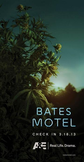 Bates_Tease_Plant-610x1175