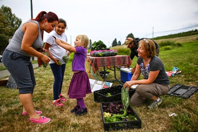 Karla and Kaylah Garcia, 9, are handed veggies by Olive Astra Utter, 4, at a free roadside stand on 15th Avenue South at the Beacon Food Forest. The community garden, built on land owned by Seattle Public Utilities, is being harvested, and on Wednesday evenings the bounty is offered free to the community at a roadside stand. Photographed on Wednesday, September 17, 2014. (Joshua Trujillo, seattlepi.com)