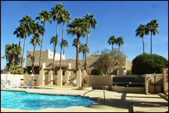 palm trees and pools