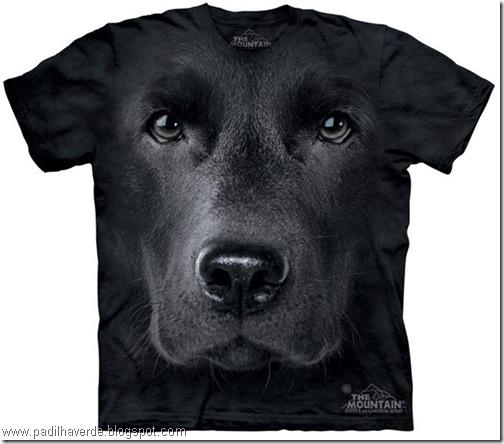 camisetas de Montain-4