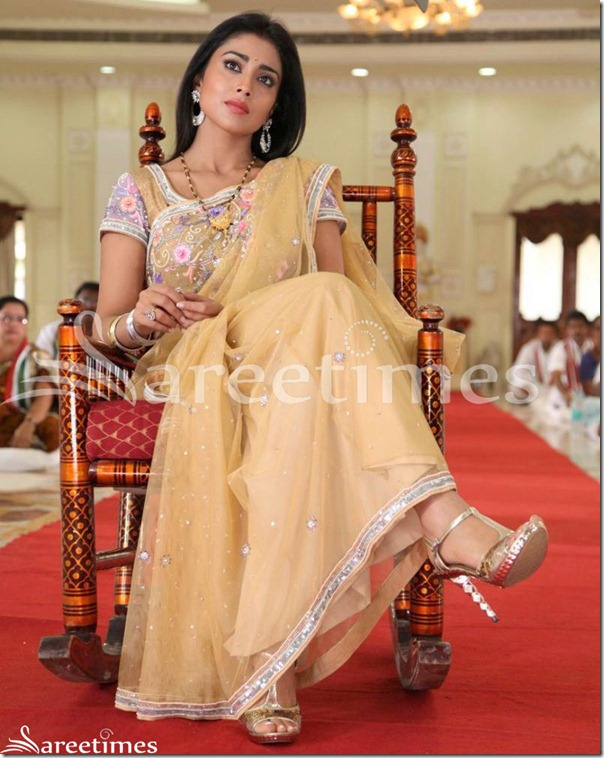 Shriya_Embroidery_Net_Saree