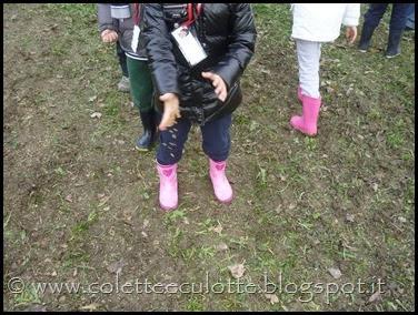 I bambini delle classi 1° della Scuola Primaria di Padulle piantano il grano! (13)