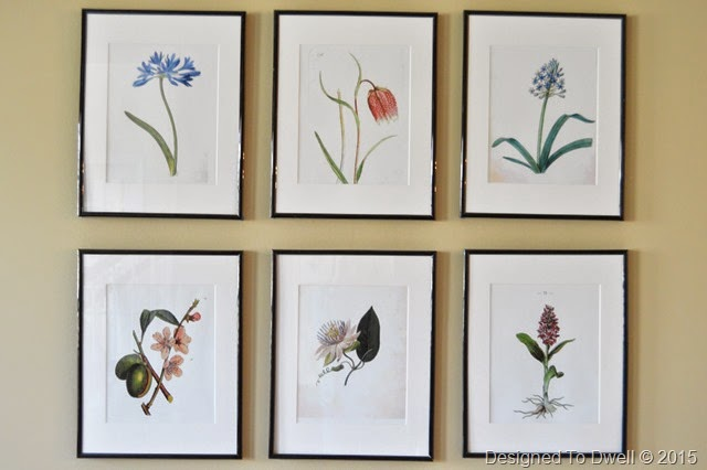 DIY Botanical Art