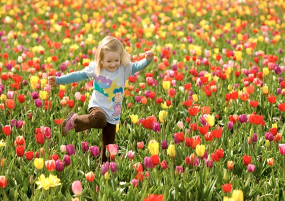 spring_large