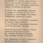 саповский-дорога.jpg